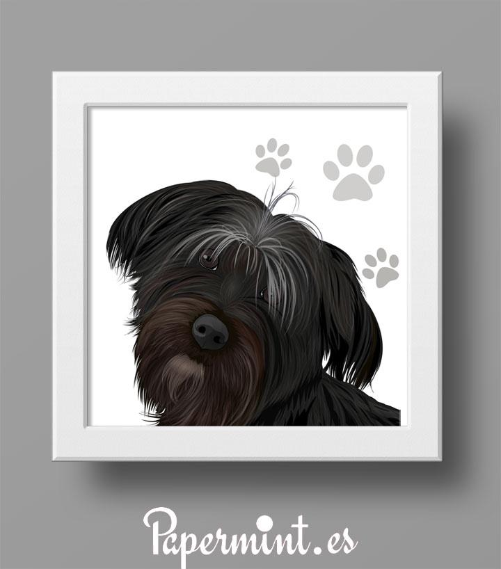 Retratos de mascotas, perros, gatos. Tipo cómic - Papermint